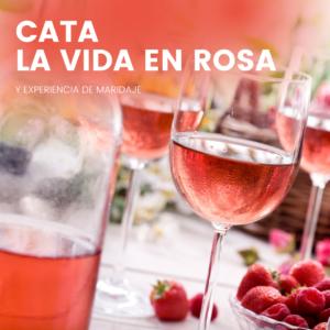cata de vinos y causas