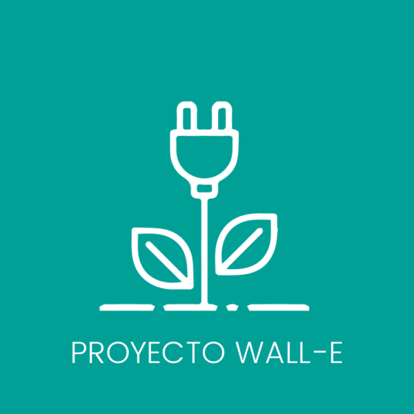 proyecto fundacion